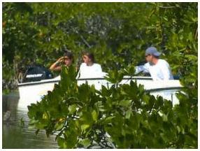 world famous snorkel tour