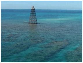 Key West Tower Snorkeling