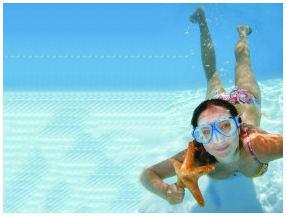 Florida Reef Snorkeling