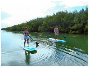 paddle board in Key West