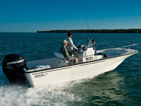 19-ft Boston Whaler Boat Rental