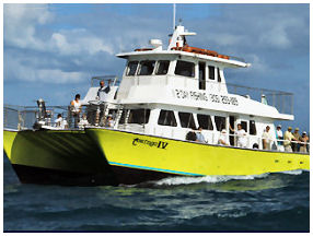 Catamaran Party Boat Fishing Charter