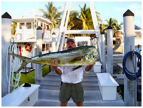huge catch in Key West