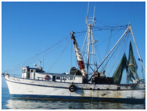Shrimp Trawler Fishing Party