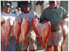 Wreck Fishing Charters